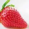 strawberry-896397_640